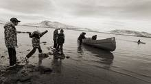School children try to get close to hunters returning from a seal hunt to the small hamlet of Cape Dorset, Nunavut, Canada on November 10, 2010. (Peter Power/Peter Power/The Globe and Mail)