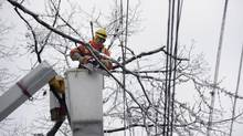 A Toronto Hydro worker uses a chainsaw to clear branches from around power lines at Pine and Willow Avenue in Toronto on Dec. 23, 2013. (FRED LUM/THE GLOBE AND MAIL)