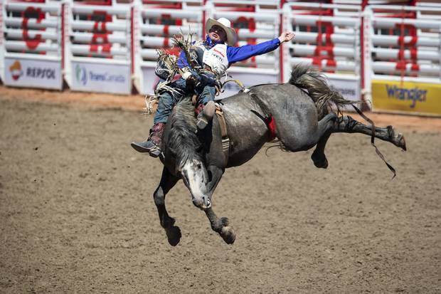 Steven Peebles rides Ultimately Wolf in the bareback event during the rodeo at the Calgary Stampede.