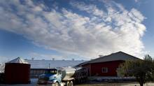 A milk truck loads up with fresh milk following the morning milking routine at Harcroft Dairy Farm north of Fergus, Ontario on Oct. 24, 2013. (PETER POWER/THE GLOBE AND MAIL)