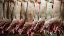 Around 90 new meat plants in Brazil have been approved to export beef, chicken and pork to Russia. (Ian Willms/Report on Business magazine)