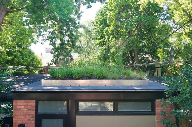 Some Owners Use The Roof Of Their Garage As A Garden
