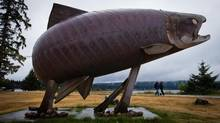 People walk past a giant salmon statue in Sandspit, B.C., on Moresby Island in Haida Gwaii on Wednesday August 14, 2013. (DARRYL DYCK/THE CANADIAN PRESS)