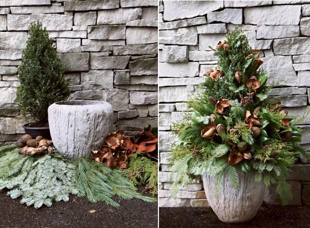 Your complete guide to indoor winter gardening the globe and mail indoor winter gardening paul zammit workwithnaturefo
