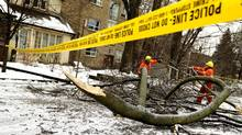 Toronto Hydro employees remove tree branches from downed hydro wires before doing repairs in the area in Toronto on December 23, 2013. Thousands of residents are still without power and tree limbs still litter some thoroughfares following the ice storm on Dec. 22nd. (Peter Power/The Globe and Mail)