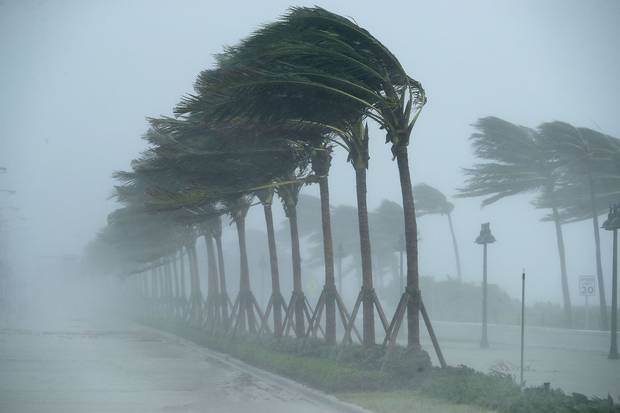 Fort Lauderdale, Fla., Sept. 10: Trees bend in the tropical storm wind along North Fort Lauderdale Beach Boulevard after Hurricane Irma hit the southern part of the state.