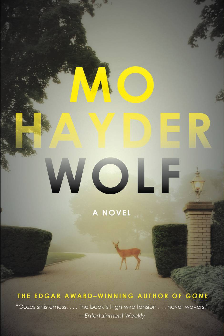 Image result for Wolf by Mo Hayder