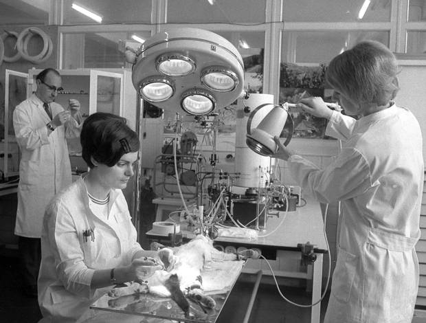 From April 1969, the lab of pharmaceutical company Gruenenthal, in Stolberg, West Germany. They were the makers of thalidomide, which caused thousands of babies to be born with shortened arms and legs or no limbs at all in the 1960's.