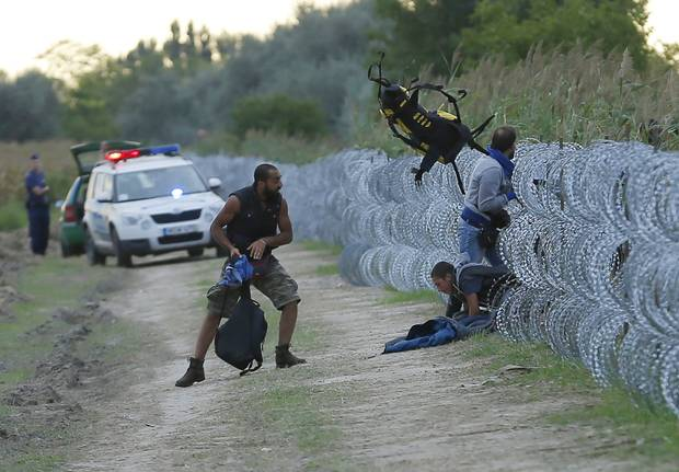 Hungarian police watch as Syrian migrants climb under a fence to enter Hungary at the Hungarian-Serbian border near Roszke, Hungary.
