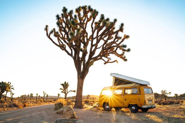 James Barkman's 1976 Volkswagon Westfalia in Joshua Tree National Park, California