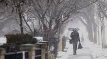 Toronto, Ontario - March 12, 2014 - SNOW STORM - A man walks down the street during snow fall in Toronto, Wednesday, March 12, 2014. (Mark Blinch/Globe and Mail)