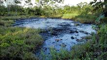 A waste pit filled with crude oil lies in a jungle clearing in Ecuador in October, 2003. (Reuters/LOU DEMATTEIS/REUTERS)