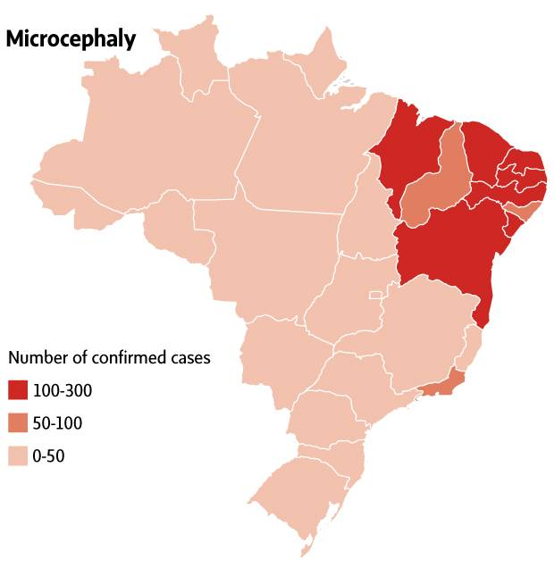 Two years after brazils zika virus crisis experts remain baffled the first map shows confirmed cases of microcephaly the most visible sign of czs from the first most severe outbreak of zika from late 2015 to mid 2016 gumiabroncs Images