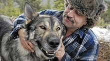 Kelowna area wolf-dog hybrid breeder Keyhan Modaressi cuddles with Simba, his 4 year old Arctic Tundra Wolf hybrid on Tuesday February 15, 2011. Simba is approximately 2 per cent dog, and 98 per cent wolf, says Modaressi. (Daniel Hayduk)