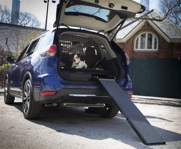 2017 Nissan Dogue.