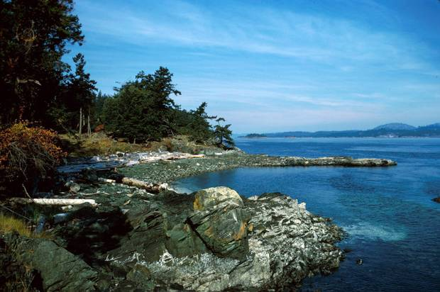 Ruckle Provincial Park sits majestically in splendid isolation at the southeast corner of Salt Spring Island.