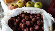 We have been picking and binging on grapes, apples, pears, figs, walnuts and chestnuts along the way. (Prostate Cancer Canada)