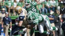Saskatchewan Roughriders defensive end John Chick sacks Winnipeg Blue Bombers quarterback Justin Goltz during the first half of CFL action in Regina, Sask., Sunday, September 1, 2013. (Liam Richards/THE CANADIAN PRESS)
