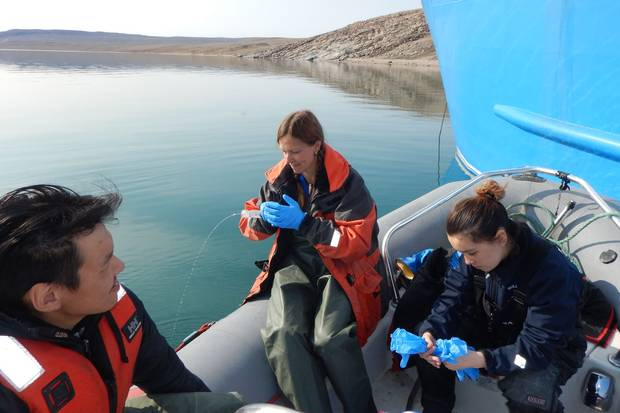 Kim Howland, a research scientist with Fisheries and Oceans Canada, is exploring how climate change could bring invasive species that would transform Arctic waters.