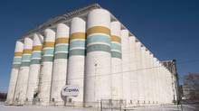 A Viterra grain storage facility in Saskatoon. (Liam Richards/LIAM RICHARDS/THE CANADIAN PRESS)