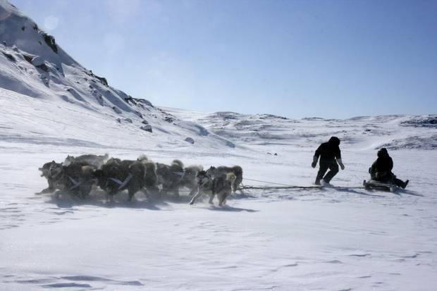 Dog team, Baffin Island, Nunavut.