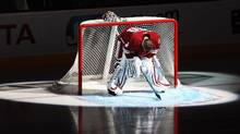 Goaltender Ilya Bryzgalov #30 of the Phoenix Coyotes is intr