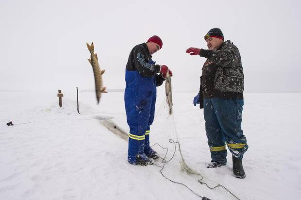 John Janvier, right, and his son Alden will take their catch to the family's backyard smokehouse, where Sandra Janvier, Mr. Janvier's wife, will clean them and prepared them for the families of the victims of last week's school shooting.