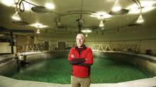 Dr. Jon Grant studies environmentally optimal salmon farming practices at the Aquatron tank at Dalhousie University in Halifax. (PAUL DARROW/GLOBE AND MAIL)