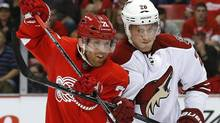 Detroit Red Wings right wing Daniel Cleary (71) and Phoenix Coyotes defenceman Michael Stone (26) battle for position in the second period of an NHL hockey game in Detroit, Thursday, Oct. 10, 2013. Phoenix won 4-2. (PAUL SANCYA/AP)
