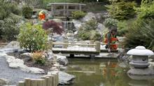 Maintenance workers tend to the plants and flowers of the Japanese Tea Garden in Esquimalt Gorge Park Tuesday May 8,2012. (Chad Hipolito for The Globe and Mail/Chad Hipolito for The Globe and Mail)