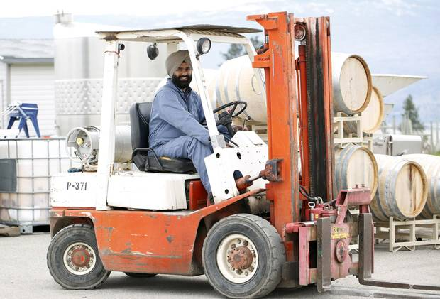 Sidhu was also able to learn the nuances of wine making at Summerhill winery in Kelowna, B.C., forming a close friendship with then Summerhill winemaker Alan Marks, who has since gone on to help many wineries, including Kalala.