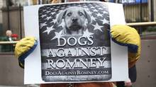 "A man holds a sign during a ""Dogs Against Romney"" demonstration outside the 136th Westminster Kennel Club Dog Show at New York's Madison Square Garden, February 14, 2012. (Reuters/Shannon Stapleton/Reuters/Shannon Stapleton)"