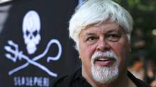 Sea Shepherd founder Paul Watson is seen in a May 23, 2012, file photo.  (Markus Schreiber/AP)