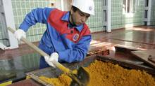 A worker rakes uranium oxide at the Zarechnoye mine in southern Kazakhstan. (SHAMIL ZHUMATOV)