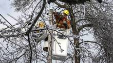 A Toronto Hydro employee works to restore power in the Scarborough, Ont., on Dec. 27, 2013. (Mark Blinch/Reuters)