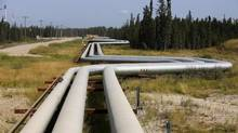Pipelines carrying steam to wellheads and heavy oil back to the processing plant line the roads and boreal forest at the Cenovus Energy Christina Lake Steam-Assisted Gravity Drainage (SAGD) project 120 km south of Fort McMurray, Alberta on August 15, 2013. (TODD KOROL/REUTERS)
