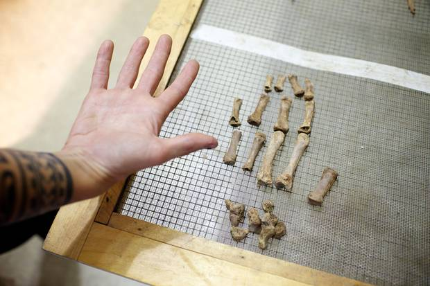 A bioarcheologist working on the project holds her hand alongside the bones from the military man's right hand.