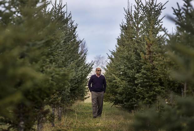 Christmas trees still available in Treasure Valley