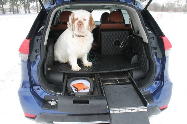 Nissan Rogue Dogue is less practical than it looks - The ...