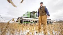 Peter Lambrick, director with the Ontario Federation of Agriculture and Chairman of the GTA Agricultural action committee, is seen taking a break from harvesting soya beans. (JENNIFER ROBERTS/Jennifer Roberts for The Globe and Mail)