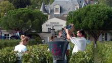 Workers gather grapes in the vineyards of Château Haut-Brion, a Premier Grand Cru estate, during the Bordeaux grape harvest. (BOB EDME/AP)