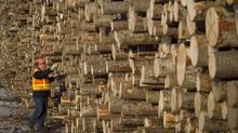 West Fraser Timber Co. Ltd. lumber mill in Quesnel, B.C. (JOHN LEHMANN/JOHN LEHMANN/THE GLOBE AND MAIL)