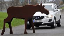 "Volvo's active safety systems includes a technology that can help avoid collisions also with animals. The system consists of two parts – a radar sensor and an infrared camera that can detect objects also when driving in the dark. Volvo Car Corporation uses a moose test ""dummy"" in the development work. (Volvo)"