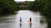 Lee Gunderson sent us this photo taken on Anahulu Stream, Oahu. He writes, This couple found their quiet passion. They both have each other, they get exercise. No pollution and they get a sightseeing tour every time they get out. Cool and relaxing sport. (Lee Gunderso/Lee Gunderso)