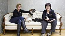 When two Edmonton photographers shut down their individual studios and opened a pets-only photo business called Chewed Slippers, some doubted whether people would pay for professional shots of their furry loved ones. Pictured are co-founders Amanda Adkins, left, and Lorena Smalley. (JASON FRANSON FOR THE GLOBE AND MAIL)