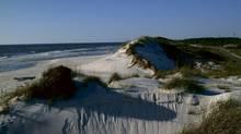Cape San Blas on the Gulf Coast.