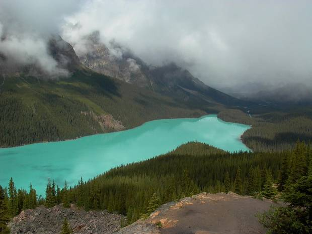 The turquoise waters of Peyto Lake.