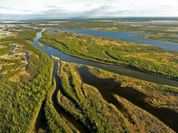 Canada is home 20 per cent of the Earth's forests and 24 per cent of its wetlands, including the Saskatchewan River Delta, seen in 2015.