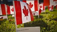 On Remembrance Day 2011, veterans awoke to a sea of 5,000 Canadian flags adorning the lawn of the Sunnybrook's Veterans Centre (Doug Nicholson)