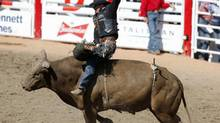 Scott Schiffner of Strathmore, Alberta, rides the bull Mr. Buddy to a first place finish in the bull riding event during the final day of the Calgary Stampede rodeo in Calgary, Alberta, July 13, 2014. (TODD KOROL/REUTERS)